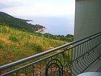 A8(2+1): terrace view