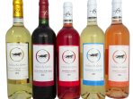 Our 5 different wines  Chateau la GONTRIE