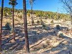 Explore the vast acres of wilderness surrounding the property.