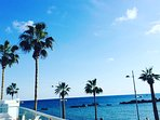 Paphos sea front promenade great for lunch