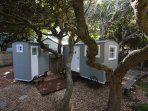 Shepherds huts under Milkwood trees