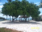 xclusive Inch Beach- Beautiful Private Beach Access- Badges Included w/ Rental   (1 block away)