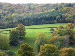 view over ancient woodland