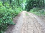 This is a view of my 2.5 mile  private  road with a gate that can be locked 1/2 mile from the lodge.