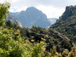 Bonifatu Forest - about 20Km from Calvi stunning scenery great walks, bathe in rock pools