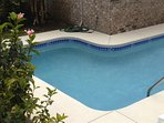 L-shaped pool with tropical landscaping. 28-1/2 feet long, 9-13 ft wide.