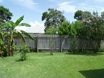 Back yard with flowering trees and bananas. Lots of room for kids and pets.