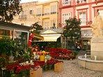 Plaza de las Flores, a pie del apartamento