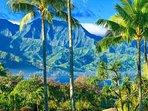 Close view of Bali Hei Mountain Range from lanai