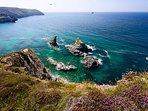 Explore Green Island off Trevellas Porth