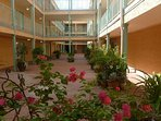 Our center atrium has many plants