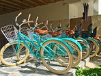 SAASIL ammenities include free bikes