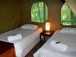 Acacia twin room