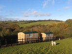 Cosy up in our Shepherds Hut - Deer's Leap (Pictured on right)