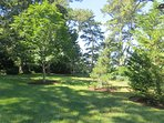 Large ,green, grassy lawn for the kids to play-160 Long Pond Drive Harwich Cape Cod - New England Vacation Rentals