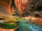 Zion National Park!