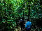 Guided Hikes Included; Our onsite staff guiding us through primary rain forest