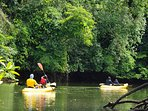 Included in Stay Guided Kayak Tour; Entire family kayaking on one of our  trail