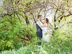 Wedding photos in wild African Spring garden.