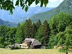 Alpine Meadows / Alpenwiesen from the alpine meadows (alpenwiesen) behind our home