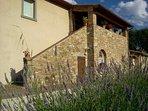La Rugantina, Tuscan Farmhouse with large swimming pool