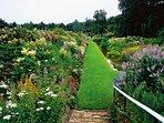 Herbaceous Borders Summer