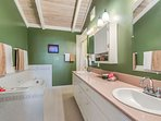 Master Bathroom has double sinks, walk in shower, over sized tub