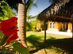 Casa Miguel has a large backyard