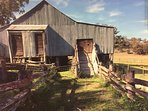 Historic Wool shed still in operation
