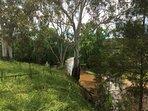 Quirindi creek runs the full length of the property