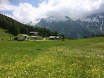 In summer the pistes in Ste Foy return to being meadows of flowers