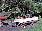 Picnic table under a tree