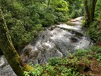 Cascading waterfall at our stream is yours to enjoy