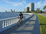 Drive or Bike up Famous Bayshore Boulevard to Downtown