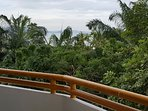 Living among the green garden and the sea is special experience of a lower floor of the building.