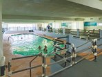 Royal Garden has an indoor pool and hot tub for year 'round enjoyment.  A great place to escape winter.