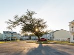 Located in a beautiful clean complex.Gated, secured, exterior video surveillance