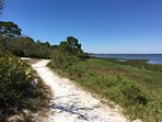 Hike through St Joseph Peninsula State Park Surrounded By St Joe Bay On All Sides