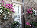 Courtyard in full summer bloom!