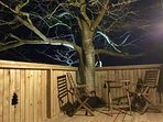 You can light the beech tree and the deck at night.