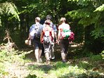 Activité à pratiquer : la randonnée