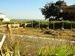 Giardino secco con vegetazione di macchia mediterranea