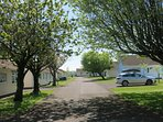 Gower Holiday Village Site