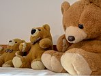 Lots of cuddles for these lovely bears