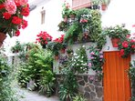 Floral cobbled street in the quaint village of Guejar Sierra - Authentic Spain