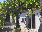 Surrounded by olive trees, grape vines and fig trees with sweeping view of distant mountains.