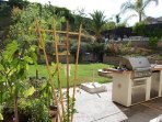 Beautiful Zen backyard with large BBQ, refrigerator & ample seating for over 15 guests.