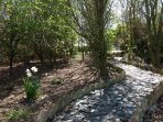 Pathway through the copse to the wildlife ponds