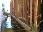 Le bassin à poissons