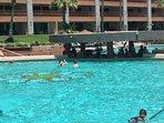 Swim Up Bar at The Sonoran Sun Resort